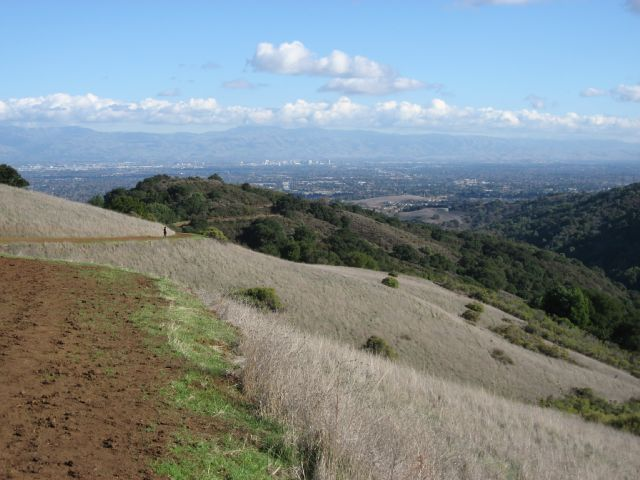 Runner at Rancho (San Jose and Mt. Hamilton)